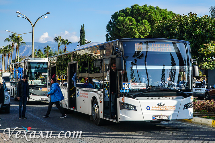 Автобусы в Алании.