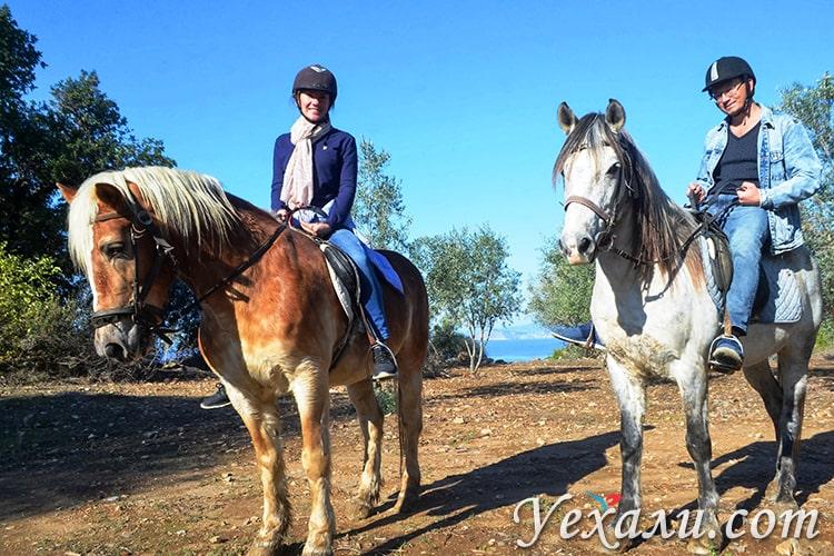 Экскурсия на лошадях, Аланья, Турция.