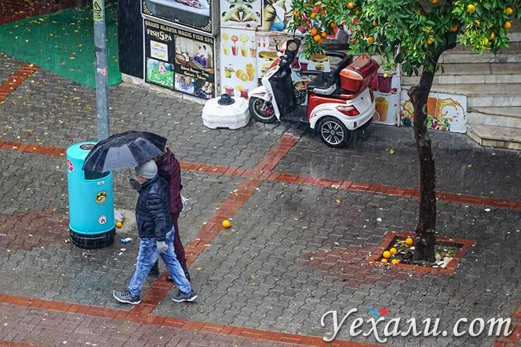 Зимовка в Турции. Декабрьский дождь.